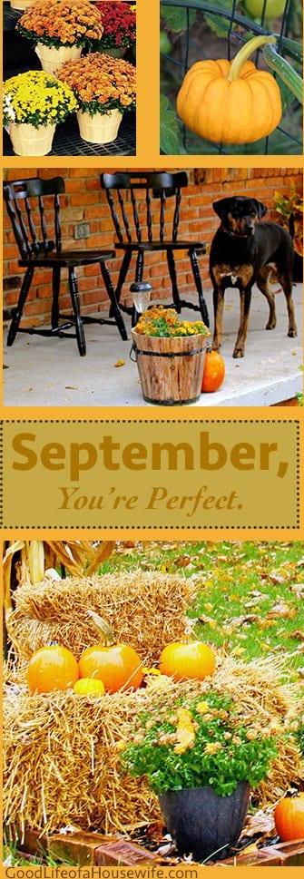 September YourPerfect
