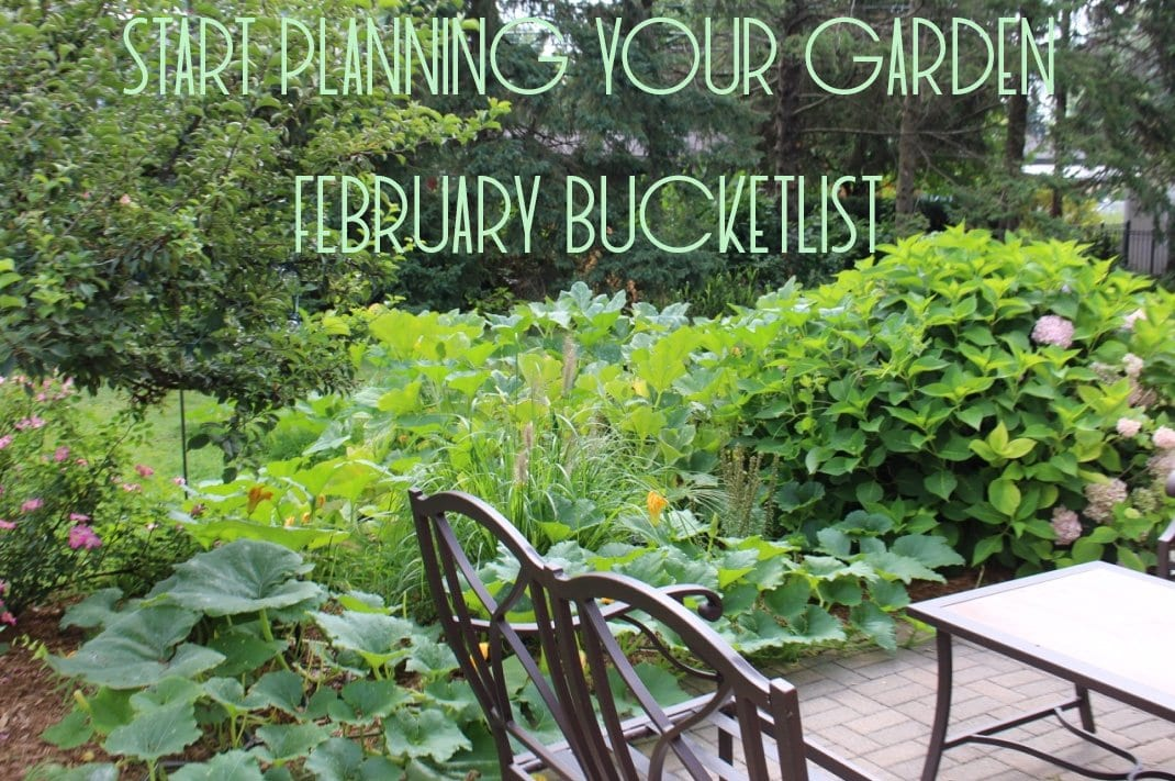 Start Planning your Garden | February Bucket List | Good Life of a Housewife