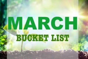 MARCH YOU'RE PERFECT: BUCKET LIST