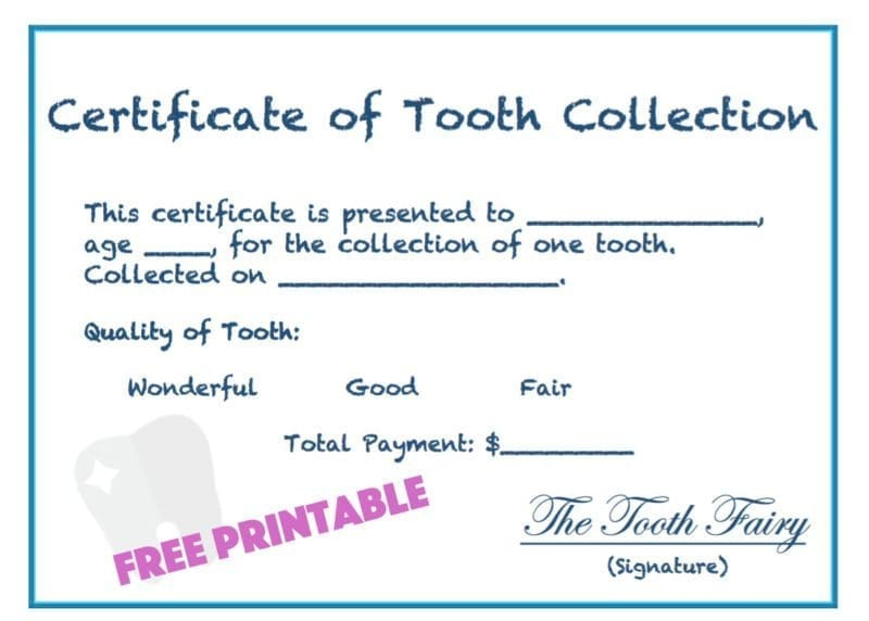 Easy Tooth Fairy Ideas. Including Clever Letters, Receipts and Printables for boys and girls